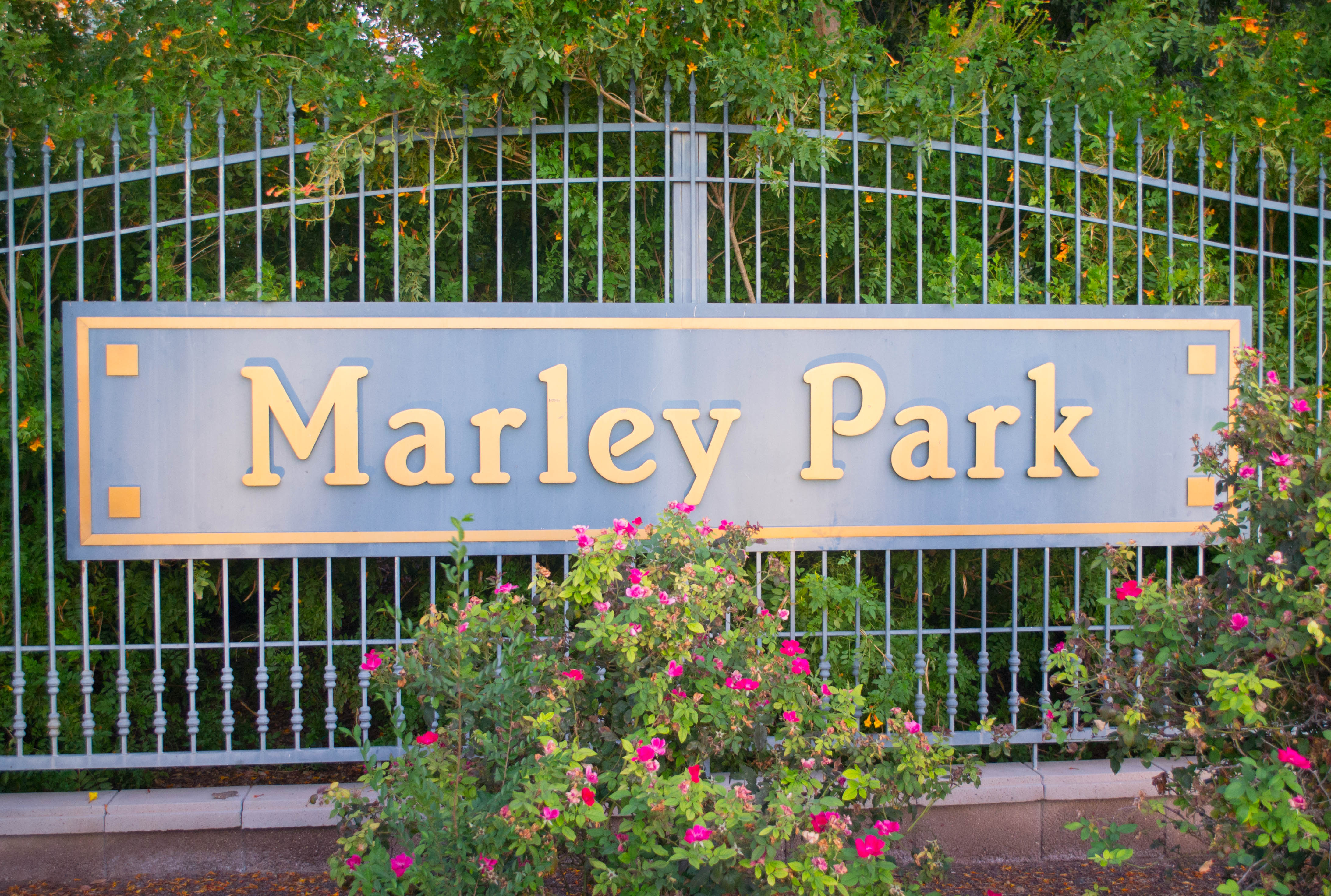 <!DOCTYPE html> <html> <head> <style> p {text-align:center;} </style> </head> <body>  <p>Marley Park