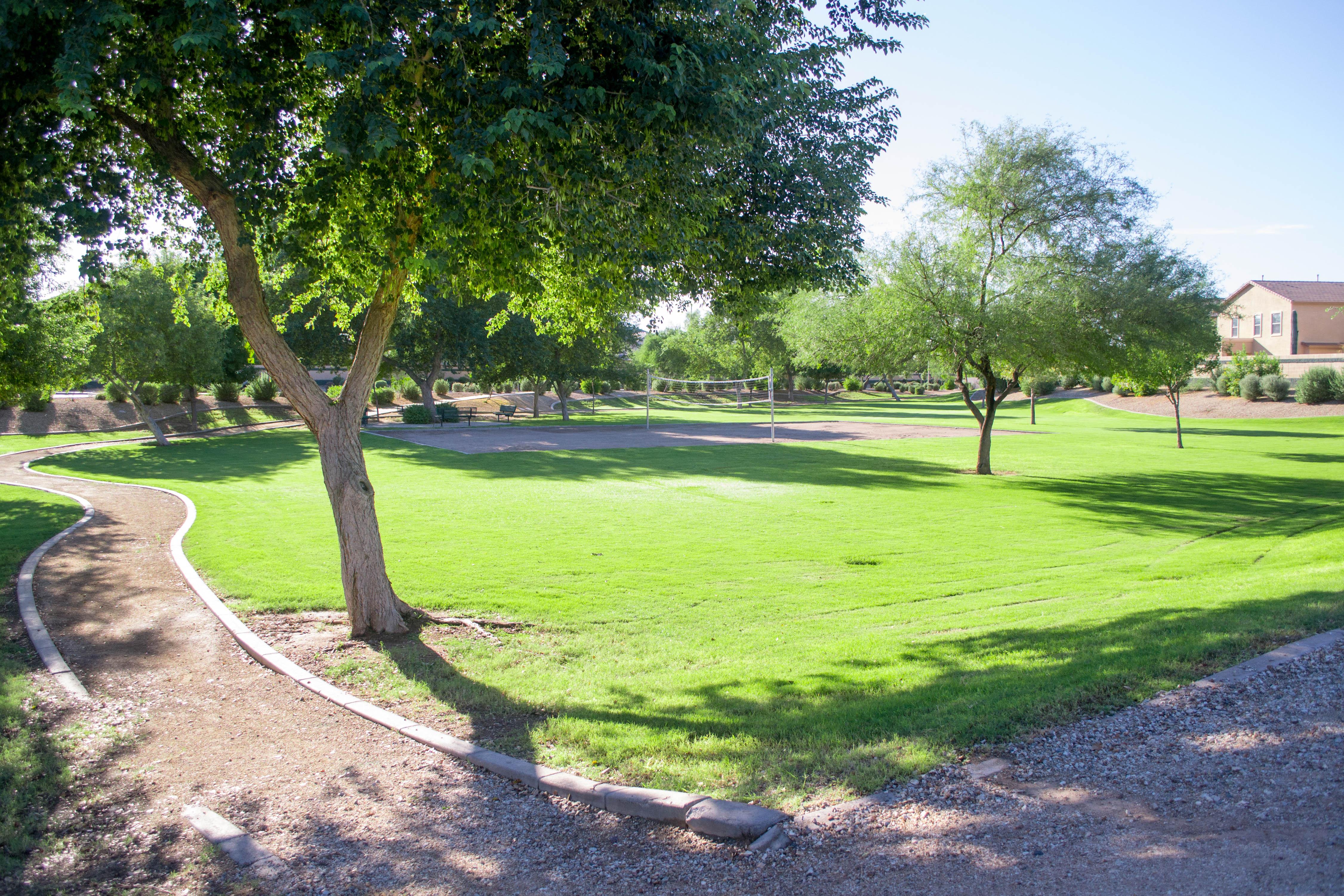 Spacious Park