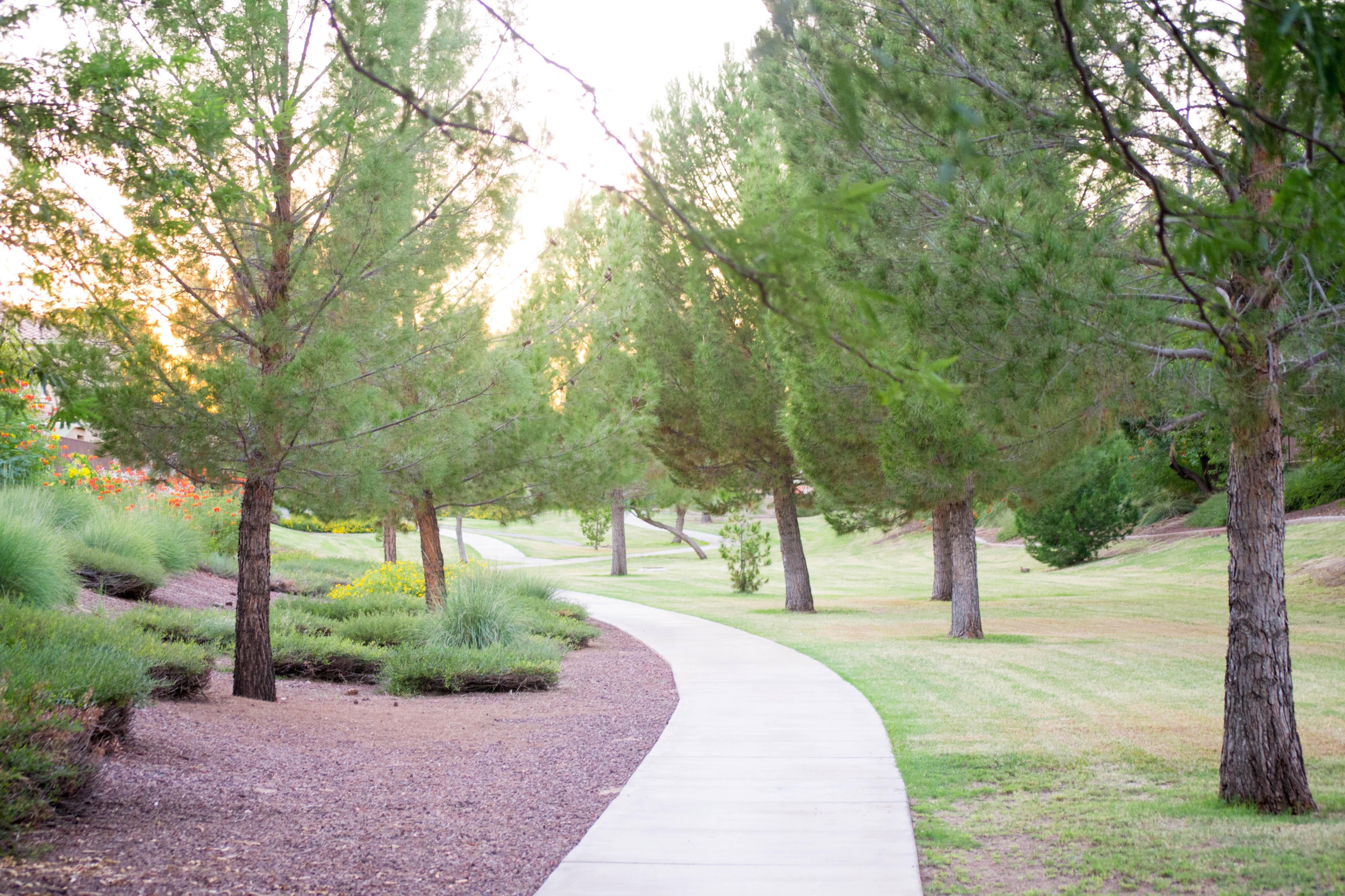 Landscaped Walkways